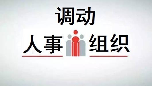 组织、人力资源和社会保障部门批准调入(